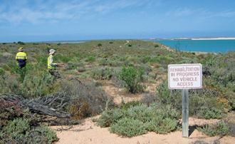 dmp mine closure plan guidelines